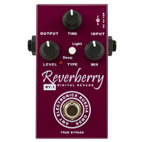 AMT Reverberry RY-1